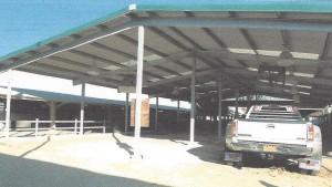 Junior livestock improvements2