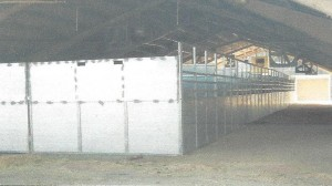 equestrian center additional stalls