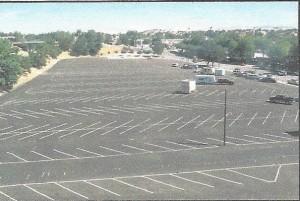 oak tree parking lot